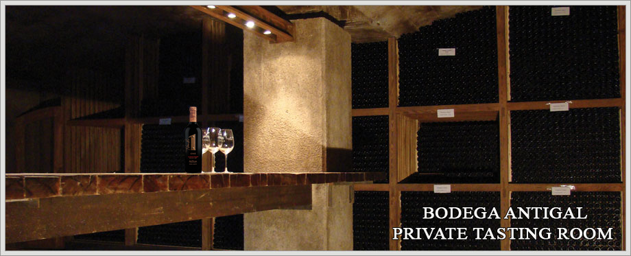 Bodega Antigal Private Tasting Room